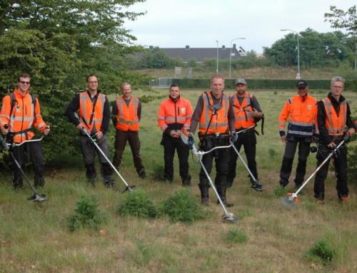 SIGHT Landscaping en Vakblad Stad + Groen testen gezamenlijk reciprocateurs